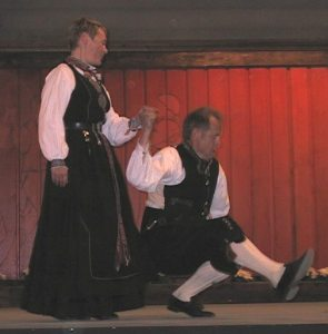 premie ledsagare dansa